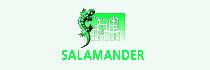 LG_Salamandur_plast